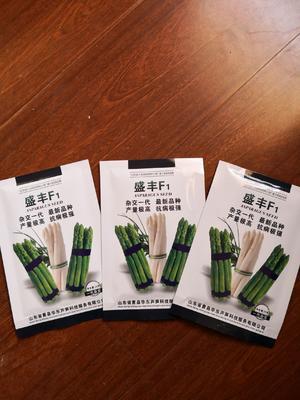 芦笋种子 袋装