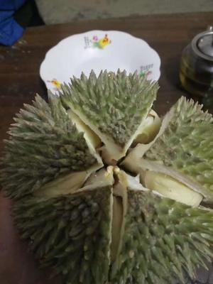 广西壮族自治区崇左市凭祥市猫山王榴莲 90%以上 2公斤以下