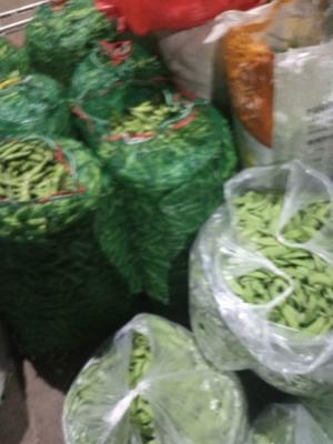云南省红河哈尼族彝族自治州弥勒市长寿仁豌豆 7-10cm