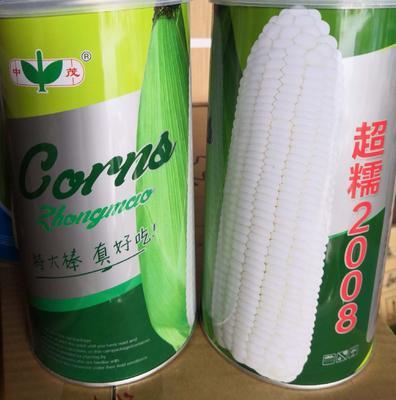 河南省南阳市卧龙区玉米种子  双交种 ≥95% ≥99% ≥85% ≤13% 超糯2008糯玉米种