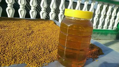 湖南省怀化市洪江市山花蜜 塑料瓶装 100% 2年以上
