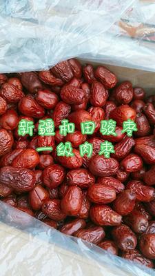 这是一张关于和田大枣  一级 一级肉枣的产品图片