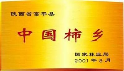 陕西省渭南市富平县富平柿饼 礼盒装