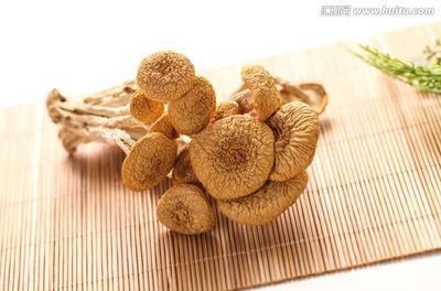 这是一张关于滑子菇 人工种植 干货的产品图片