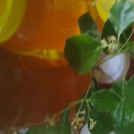 四川省绵阳市安县土蜂蜜 塑料瓶装 2年以上 95%以上