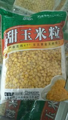 黑龙江省绥化市明水县甜玉米 去壳 甜