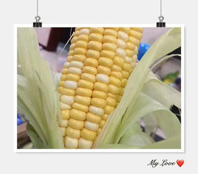 广西壮族自治区防城港市东兴市库普拉902玉米 带壳 甜