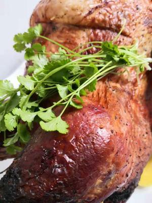 这是一张关于青铜火鸡 5-10斤的产品图片