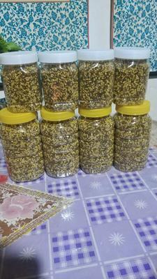 新疆维吾尔自治区伊犁哈萨克自治州新源县野生蜂蜜 塑料瓶装 2年以上 98%