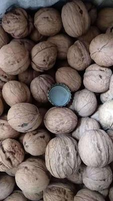 这是一张关于香玲核桃的产品图片