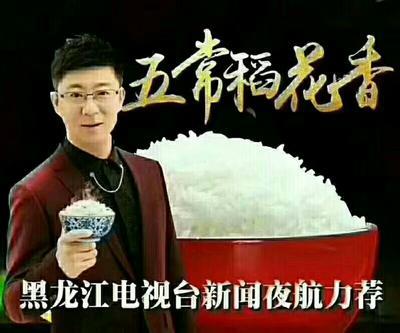 黑龙江省哈尔滨市五常市稻花香2号稻谷 中稻/一季稻