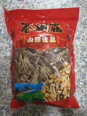 福建省厦门市翔安区棕褐色帽茶树菇 12~14cm 已开伞 干茶树菇