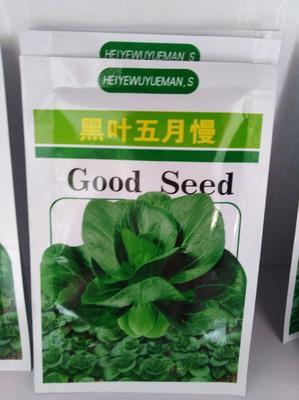山东省潍坊市寿光市油菜籽种子 杂交种 ≥99% ≥99% ≥99% ≤3%