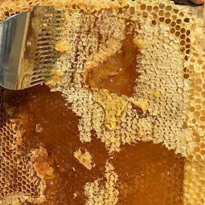 湖南省郴州市资兴市野生蜂蜜 塑料瓶装 2年以上 100%