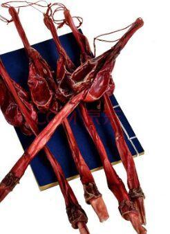 这是一张关于狗鞭的产品图片