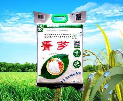 这是一张关于菁芗贡米 一等品 晚稻 籼米的产品图片