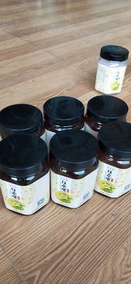 甘肃省甘南藏族自治州舟曲县土蜂蜜 塑料瓶装 2年以上 98%