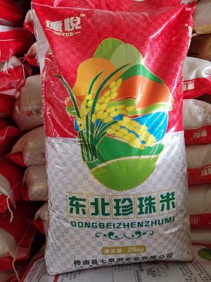 广东省东莞市东莞市东北大米 一等品 一季稻 粳米