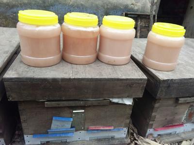河南省南阳市方城县野生蜂蜜 塑料瓶装 2年以上 100%