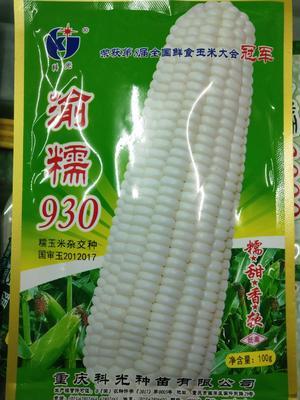 四川省成都市成华区玉米种子 单交种 ≥96% ≥99% ≥85% ≤13%