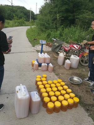 吉林省白山市抚松县椴树蜜 塑料瓶装 2年 95%以上