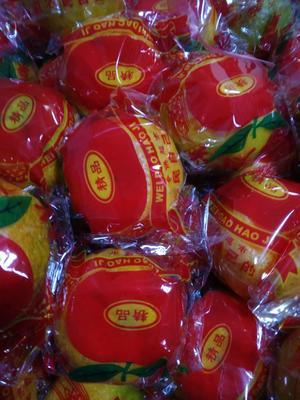 这是一张关于顺昌芦柑 6.5 - 7cm 2 - 3两的产品图片