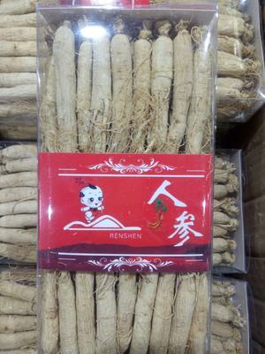 这是一张关于野生人参 全须生晒参 盒装 整根的产品图片