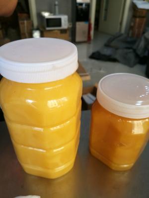 云南省红河哈尼族彝族自治州屏边苗族自治县土蜂蜜 塑料瓶装 100% 2年