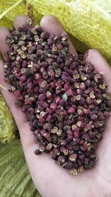 这是一张关于大红花椒 一级 干花椒的产品图片