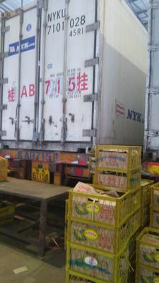 广西壮族自治区南宁市青秀区金枕头榴莲 3 - 4公斤 60 - 70%以上