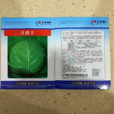 这是一张关于绿甘蓝种子 ≥99% 杂交种的产品图片