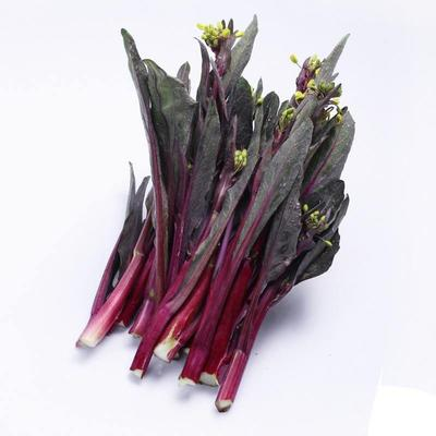 这是一张关于红菜苔 25~30cm的产品图片