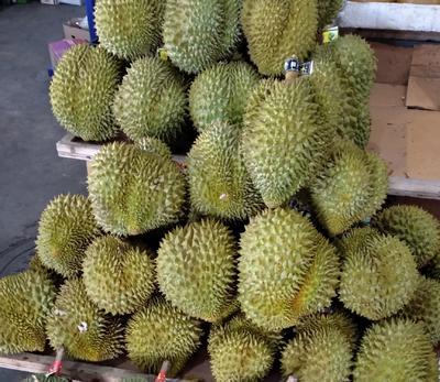 广西壮族自治区崇左市宁明县泰国金枕榴莲 80 - 90%以上 2公斤以下