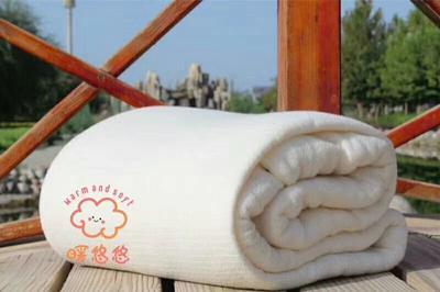 新疆维吾尔自治区阿拉尔市阿拉尔市新疆棉花  棉被棉被芯褥子垫子