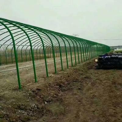 安徽省蚌埠市怀远县C型钢温室大棚