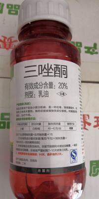 这是一张关于三唑酮 乳油 瓶装 低毒的产品图片