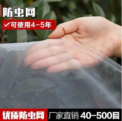 广东省深圳市龙岗区防虫网
