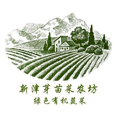 这是一张关于豌豆苗 人工种植 5-10cm的产品图片