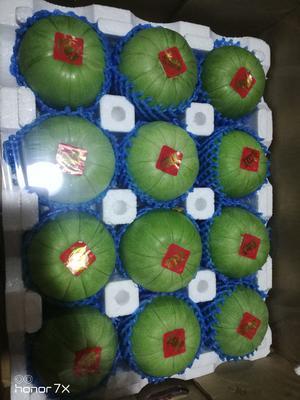 这是一张关于绿宝石甜瓜 0.3斤以上的产品图片