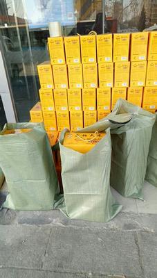 这是一张关于盘锦大米 一等品 晚稻 籼米的产品图片
