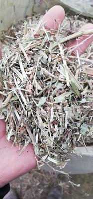 这是一张关于花生秧的产品图片