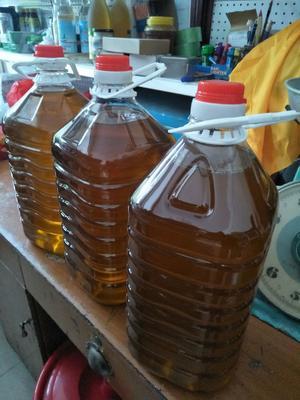 广东省梅州市平远县野生山茶油