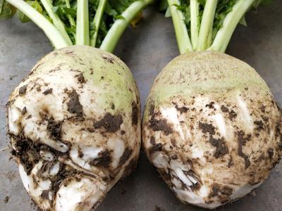 这是一张关于荷塘头菜的产品图片