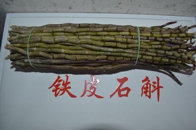 这是一张关于铁皮石斛  仿野生铁皮石斛鲜条的产品图片