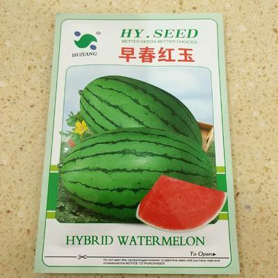 这是一张关于早春红玉种子 ≥85% 亲本(原种)的产品图片