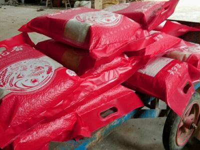 湖南省娄底市双峰县泰优390大米 一等品 晚稻 籼米