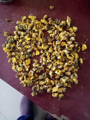这是一张关于江陵金菊的产品图片