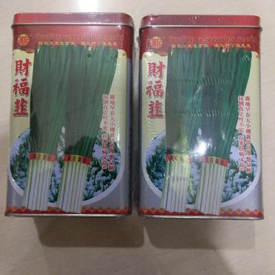 山东省临沂市兰山区韭菜种子 罐装