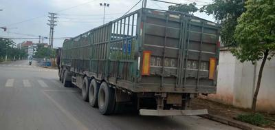 这是一张关于载货汽车的产品图片