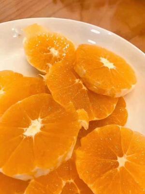 这是一张关于黔阳冰糖橙 55mm 2两的产品图片